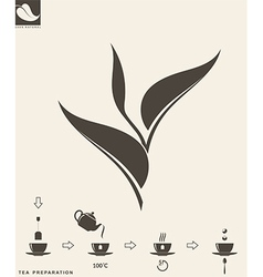 Tea preparation Leaf vector