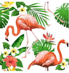 flamingo bird and tropical flowers vector image vector image