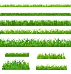 Big green grass vector