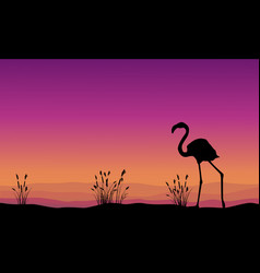 collection stock flamingo silhouette scenery vector image vector image