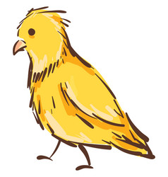 a yellow canary bird on white background vector image