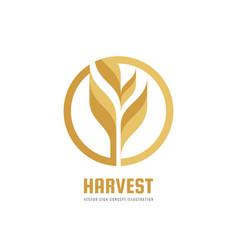 Harvest - logo template creative vector