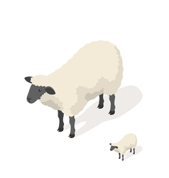 Isometric 3d of sheep vector