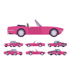 Pink lady cabriolet cat set vector