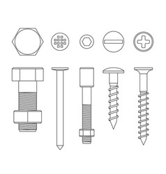 screws and bolts vector image
