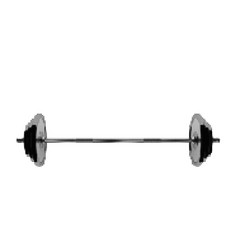 Barbell isolated on white background vector