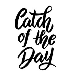 Catch of the day hand drawn lettering phrase vector