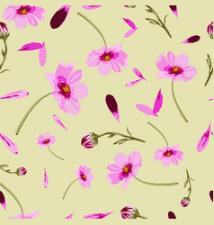 cosmos flowers on yellow background-flowers in vector image