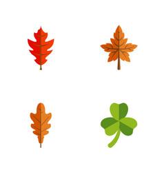 Flat icon leaves set of leaf linden alder and vector