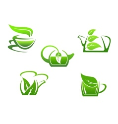 Green herbal tea cups vector