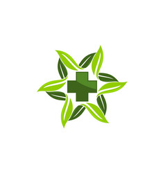 herbal medicine logo design template vector image