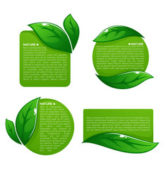 nature tag templates collection of leaf labels vector image