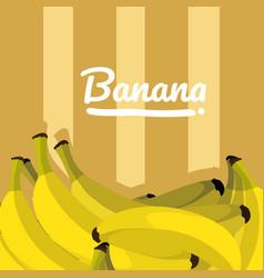 Sweet bananas fruit vector