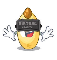 Virtual reality cedar pine nuts on a cartoon vector