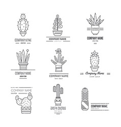 Logo with cactuses vector image
