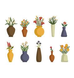 flowers in vases arrangements decorations for vector image