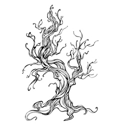 Contour of the old tree vector