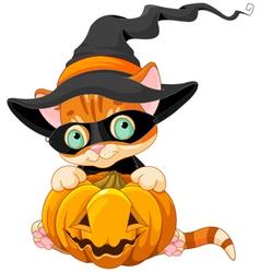 Cute Halloween Kitten vector image vector image