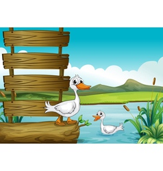 An empty signboard with ducks vector