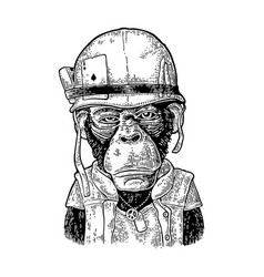 Monkey in soldier helmet with glasses vintage vector