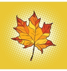 Red maple leaf in autumn vector image