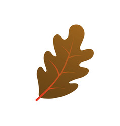 autumn oak leaf silhouette on white background vector image