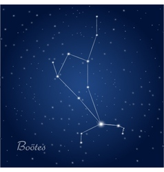 Bootes star constellation vector