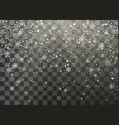 dark nignt holiday snowfall isolated on vector image