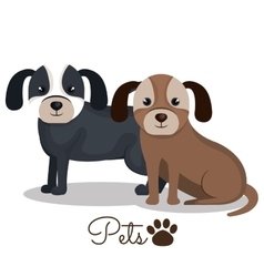 Dog pet mascot isolated icon vector