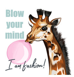 fashion giraffe blow gum vector image