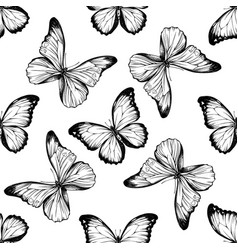 Seamless pattern with black and white menelaus vector