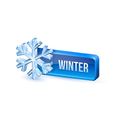 Winter button vector image