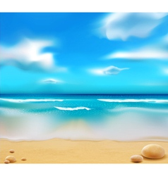 beach and pebbles vector image