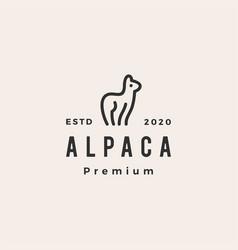 alpaca hipster vintage logo icon vector image