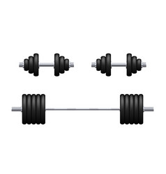 Barbell and dumbbells isolated vector
