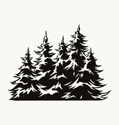 fir trees vintage template vector image