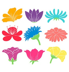 Floral artworks vector image