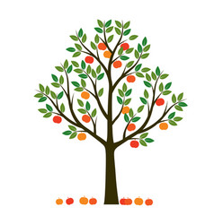 Shape tree with leaves and fruits outline vector
