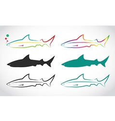 group of shark vector image