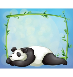 A sleeping panda and the empty frame made of vector image vector image
