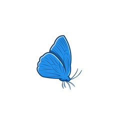 butterfly logo designs inspiration isolated on vector image