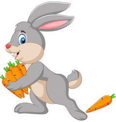 cartoon rabbit carrying carrots vector image