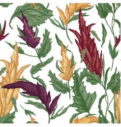 Elegant botanical seamless pattern with quinoa vector