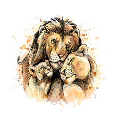 family lions from a splash watercolor vector image