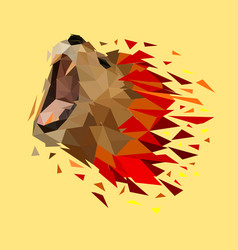 isolated low poly colorful lion with white yellow vector image
