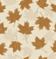 LeavesHerbarium vector