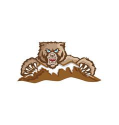 mountain and bear logo design vector image