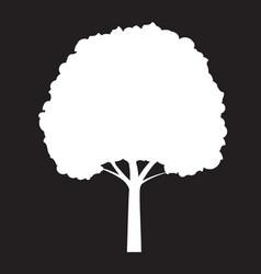 Shape white tree on black background outline vector