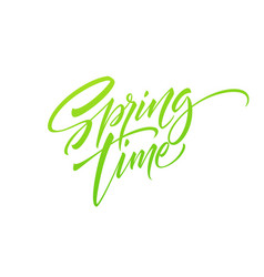 spring time hand drawn lettering isolated vector image