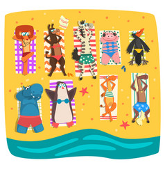 wild animals sunbathing on the beach cute animals vector image